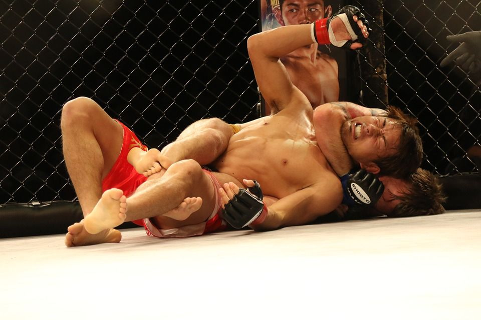 A scene from a MMA competition